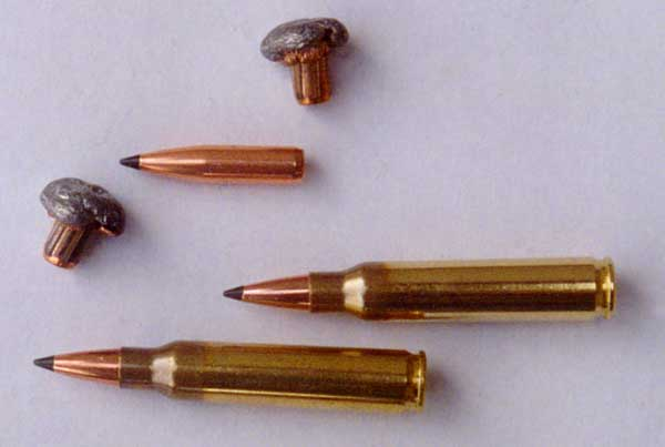 AR-15 5.56mm Tactical Ammo