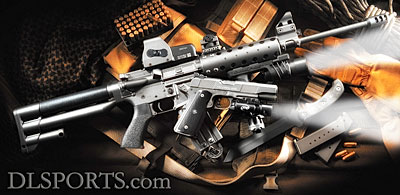D&L Sports™ AR-15 with Buttstock